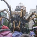 Spider 17