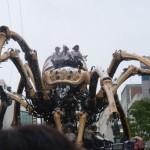 Spider 19