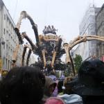 Spider 25