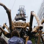 Spider 41